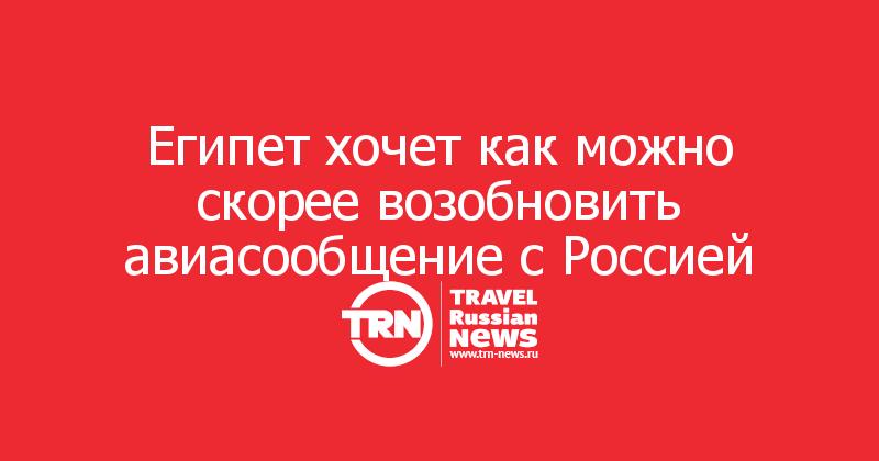 Египет хочет как можно скорее возобновить авиасообщение с Россией