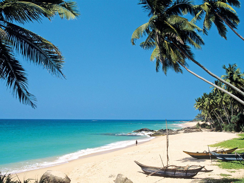 ВПосольстве Шри-Ланки пока неподтвердили информацию озакрытии страны