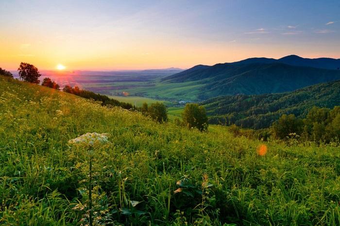 Город-курорт Белокуриха собрал более 13 млн рублей на курортном сборе