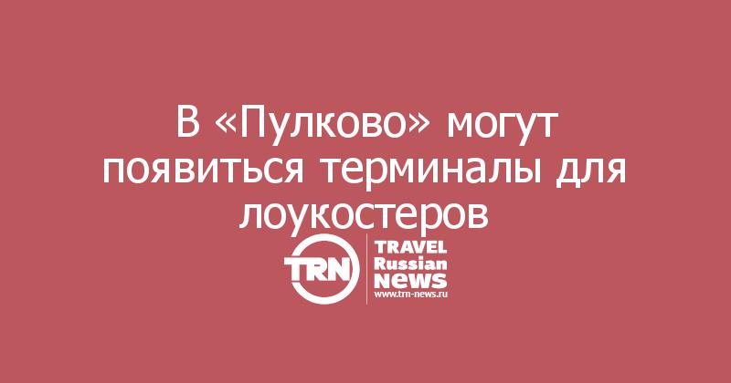 В «Пулково» могут появиться терминалы для лоукостеров