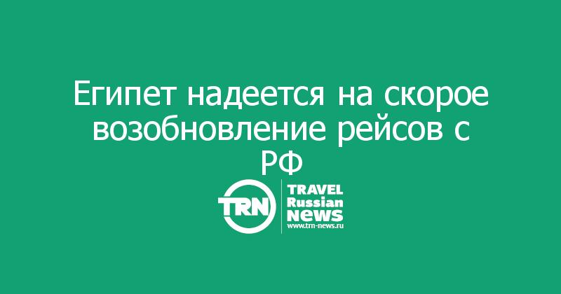 Египет надеется на скорое возобновление рейсов с РФ
