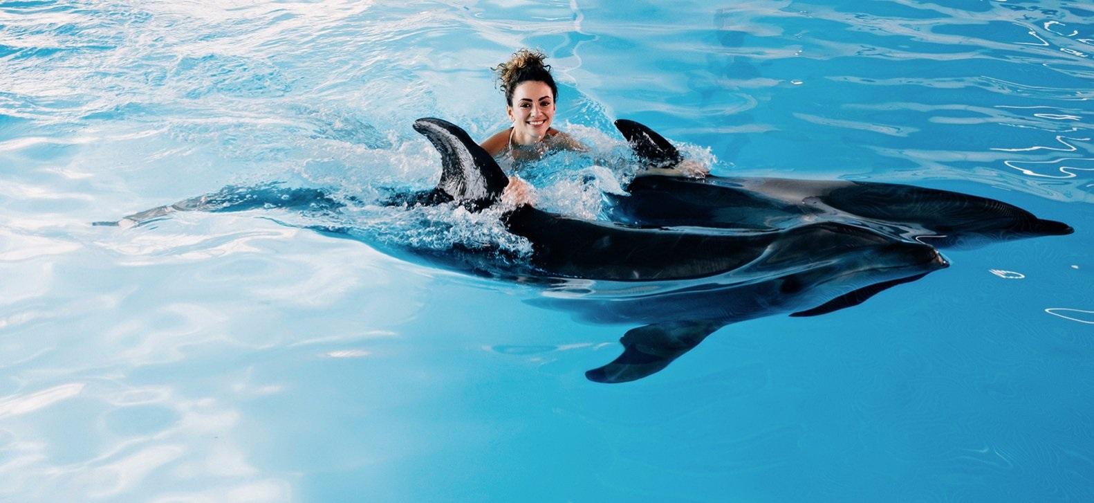 8 вещей, которые нужно сделать этой зимой вFour Seasons Resort Sharm elSheikh