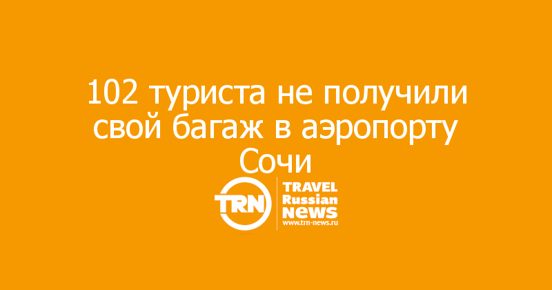102 туриста не получили свой багаж в аэропорту Сочи