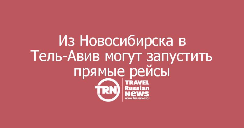 Из Новосибирска в Тель-Авив могут запустить прямые рейсы