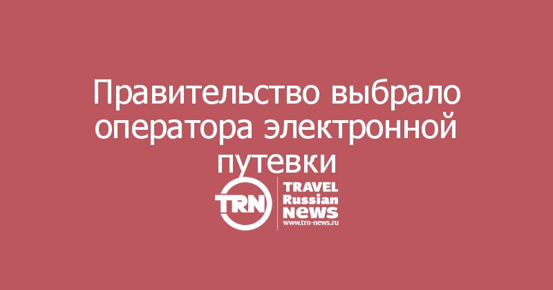 Правительство выбрало оператора электронной путевки