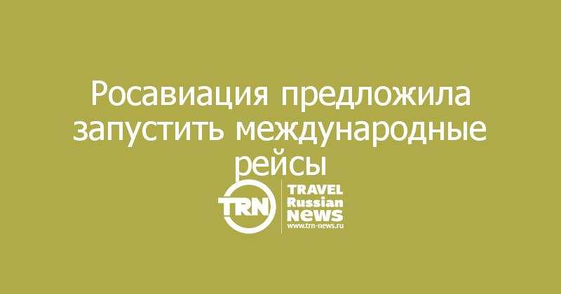 Росавиация предложила запустить международные рейсы