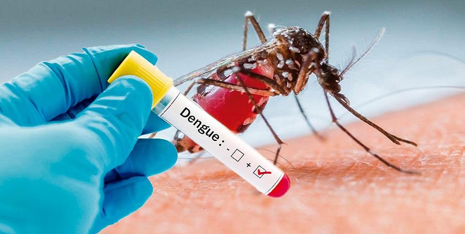 МИД предупредил туристов овспышке денге воВьетнаме