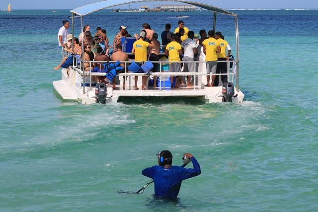 Поклонников Доминиканы ждет сюрприз